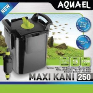 Maxi Kani 250