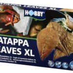 Catappa Leaves