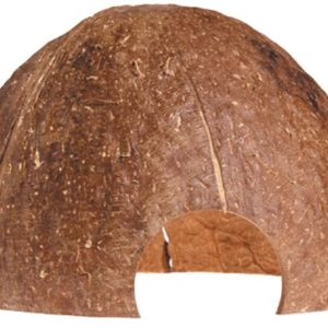 Dekor Grotta Kokosnöt