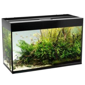 Akvarium Glossy 215L Svart