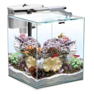 Akvarium Set Nano Reef Duo 49L