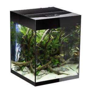 Akvarium Glossy 135L Svart
