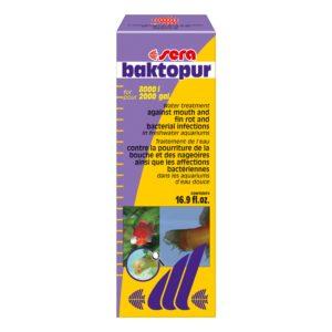 Baktopur