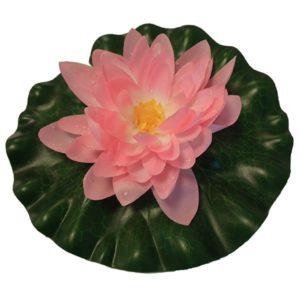 Näckros rosa 20 cm