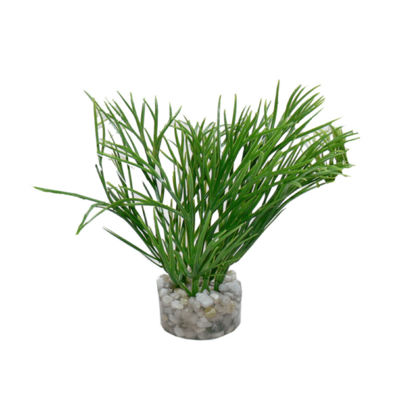 PLASTVÄXT NANO GREEN PLANT SYDECO 11 cm