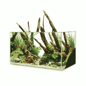 ScaperLine 100 Aquarium
